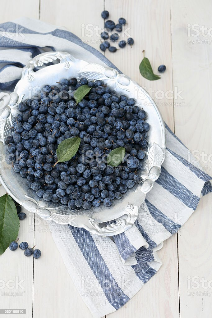 Prunus spinosa on the white table, top view stock photo