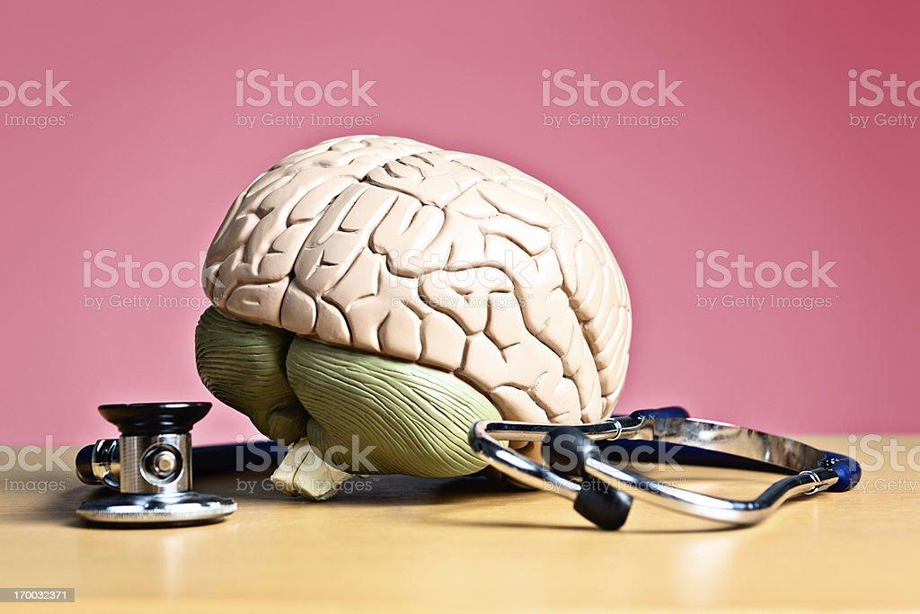 Psychiatry or neurology? Model brain with stethoscope royalty-free stock photo