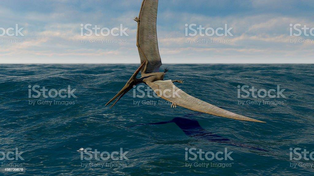 pteranodon stock photo