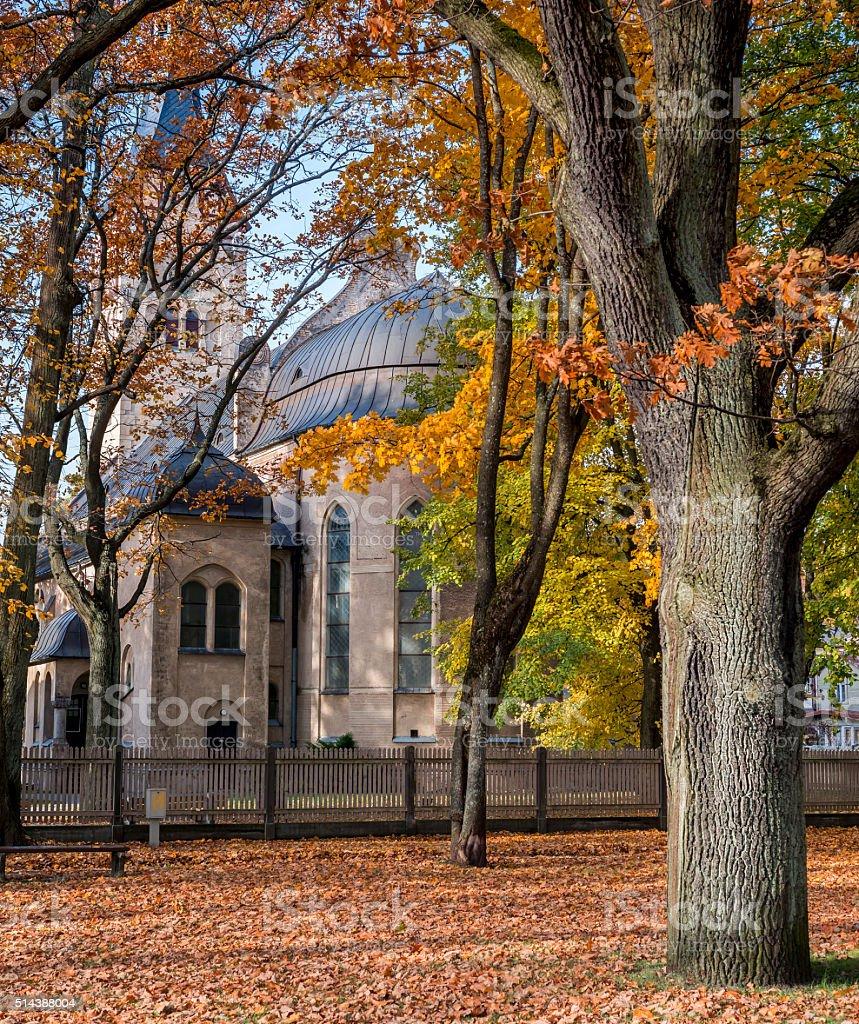 Public autumnal park in Dubulti stock photo