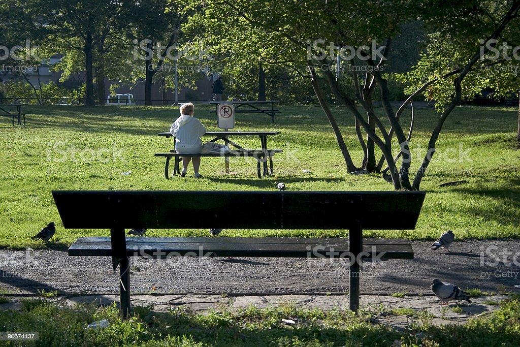 Public Bench royalty-free stock photo
