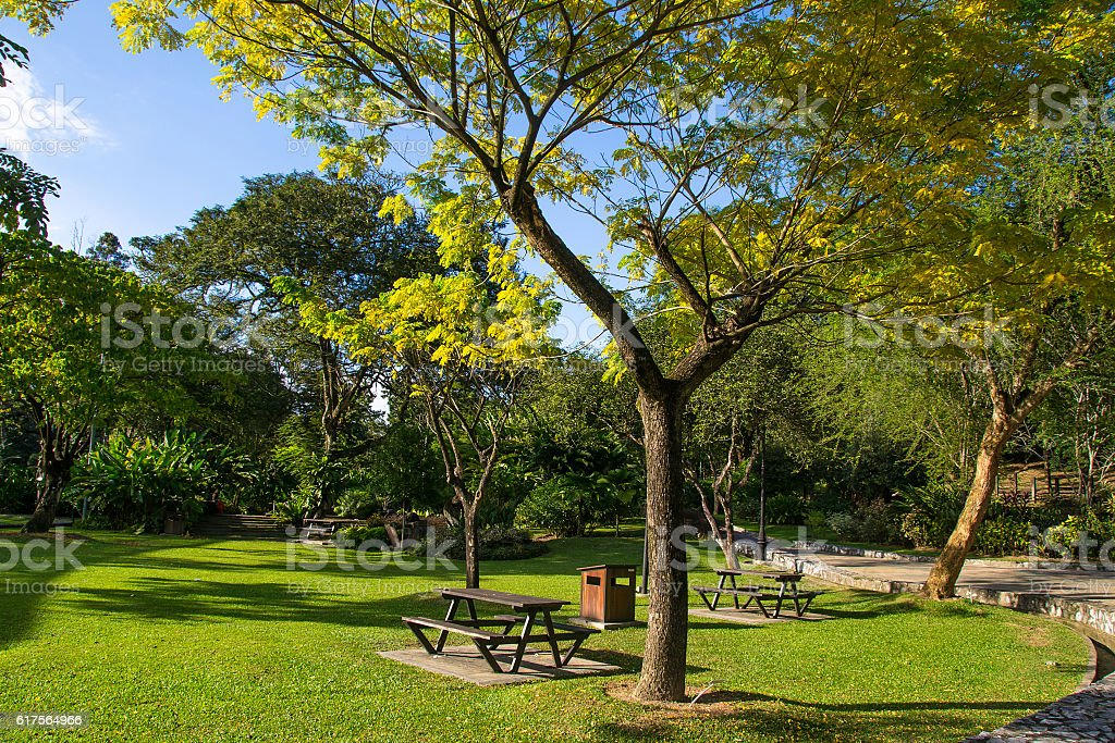 Public city park summer day. Picnic place. Weekend time concept. stock photo
