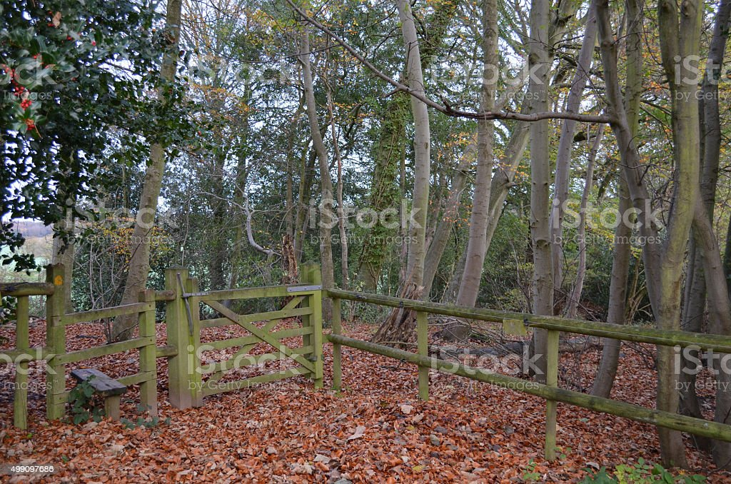 Public footpath gate and stile. stock photo