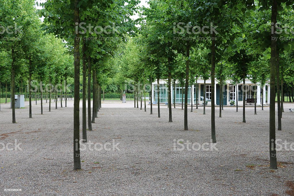 Public park in Schwerin in summer, Germany stock photo