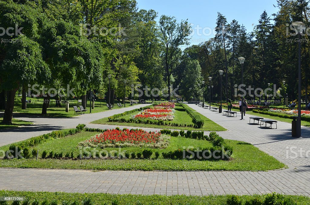 Public Park in Summer stock photo