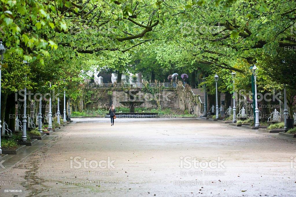 public park. stock photo