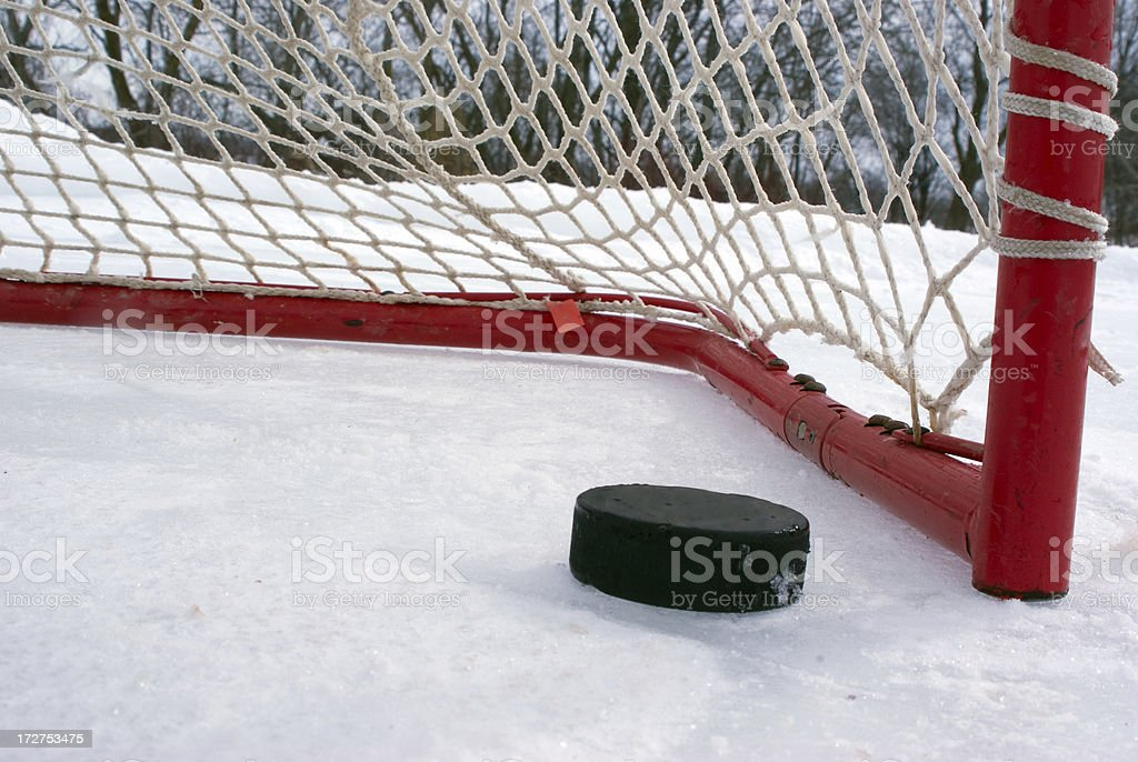 Puck on the Goal Line stock photo