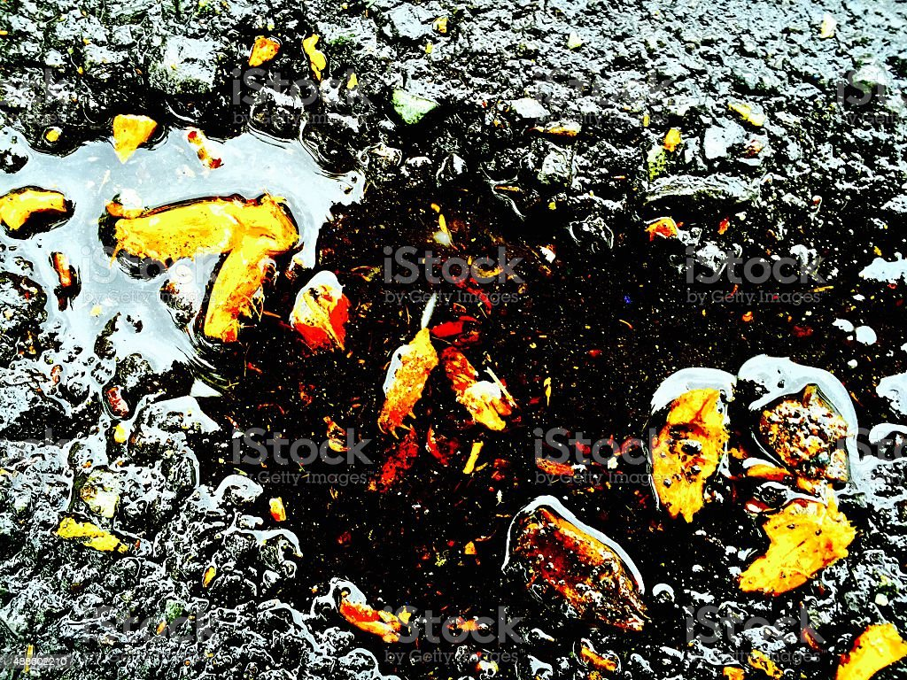 Puddle of water with golden rocks royalty-free stock photo