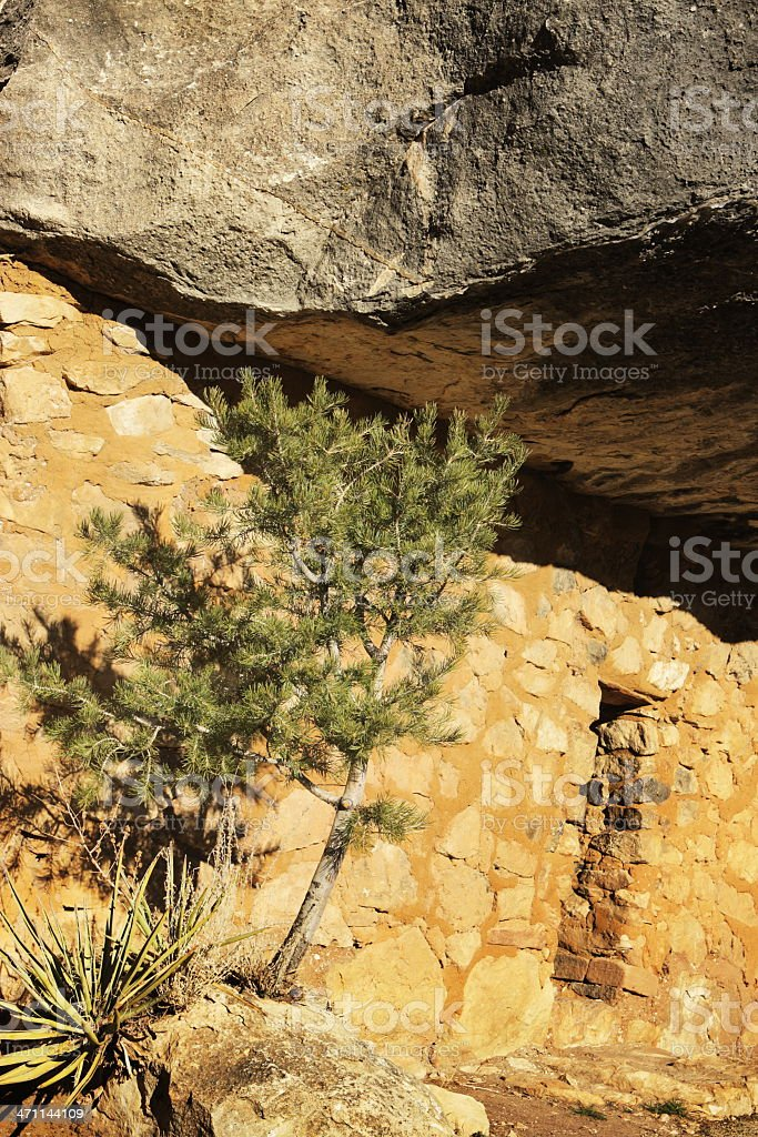 Pueblo Cliff Dwelling Canyon Ruin stock photo
