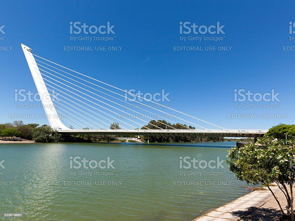 Puente del Alamillo, Seville stock photo