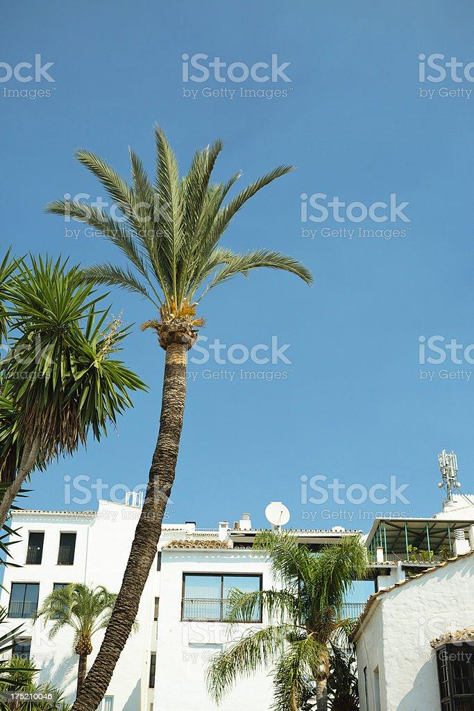Puerto Banos stock photo