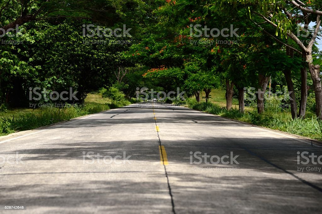 Puerto Limon Country Side stock photo
