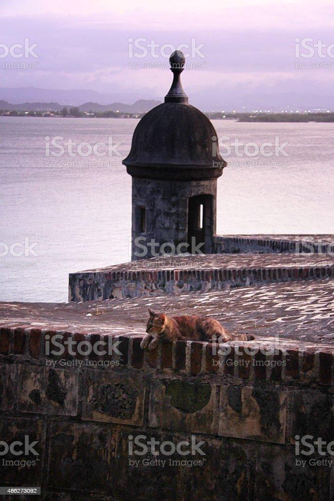 Portoryko rico zbiór zdjęć royalty-free
