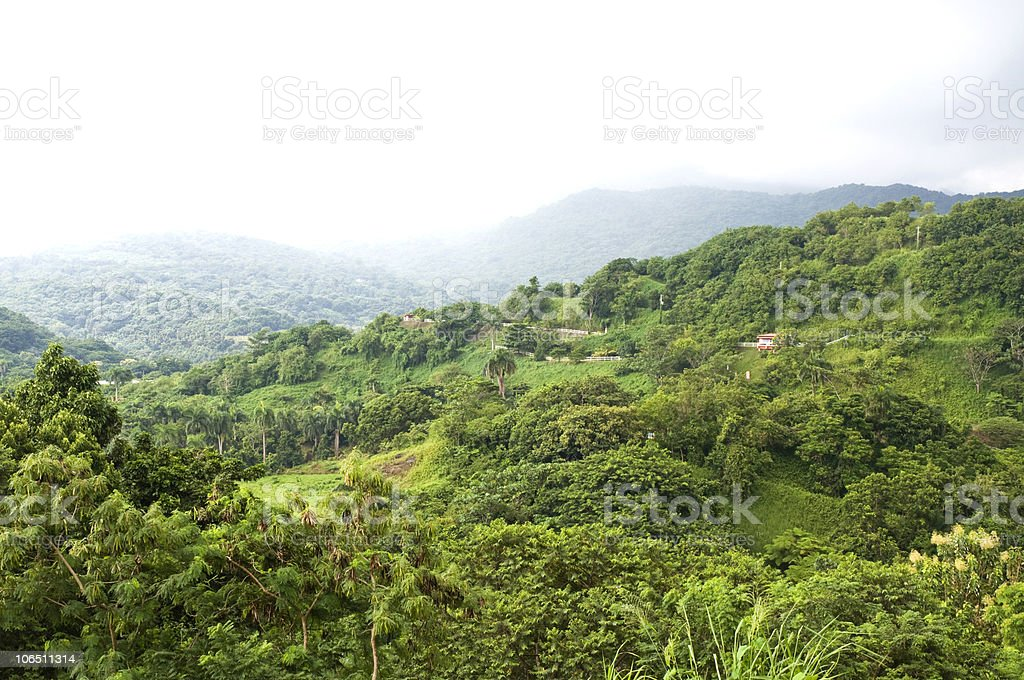 Puerto Rico Rainforest And Mountains stock photo