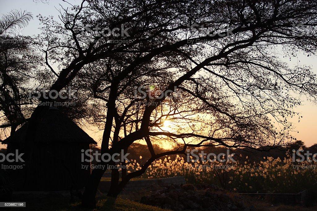 Puesta de sol stock photo