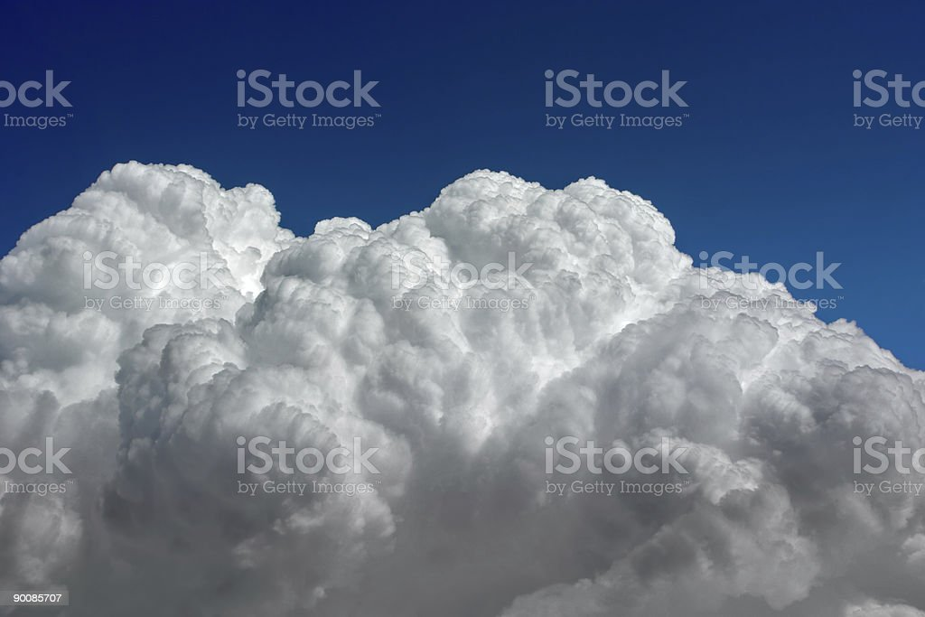 Puffed Up royalty-free stock photo