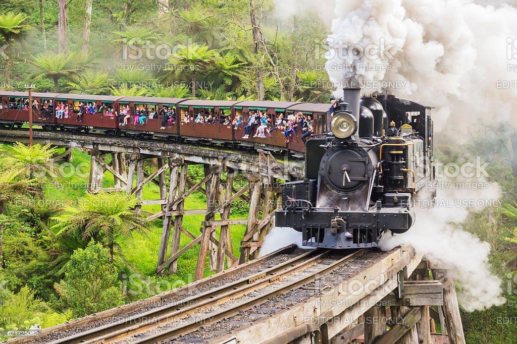 Puffing Billy Railway Train stock photo