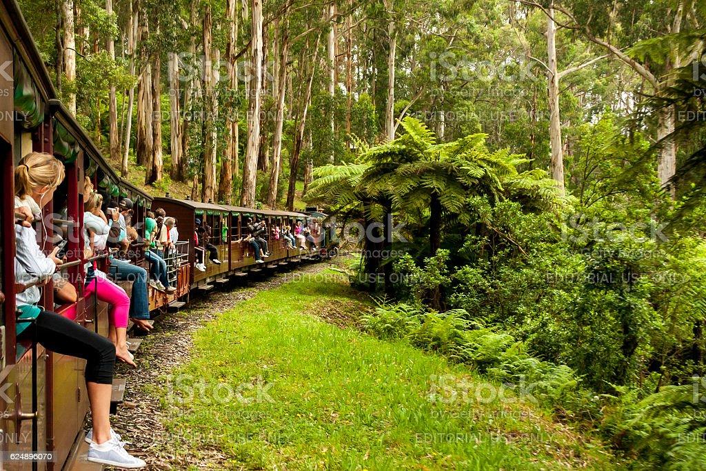 Puffing Billy steam train. Melbourne, Australia stock photo