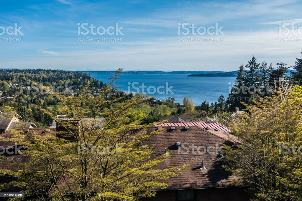 Puget Sound Landscape In The Spring stock photo