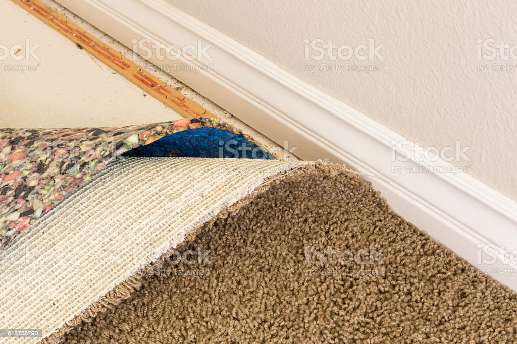 Pulled Back Carpet Flooring and Padding In Room stock photo