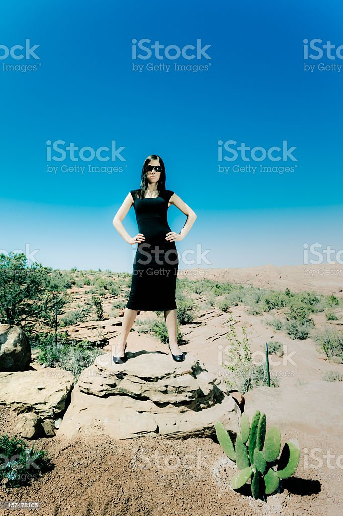 Pulp Desert Series 3 royalty-free stock photo