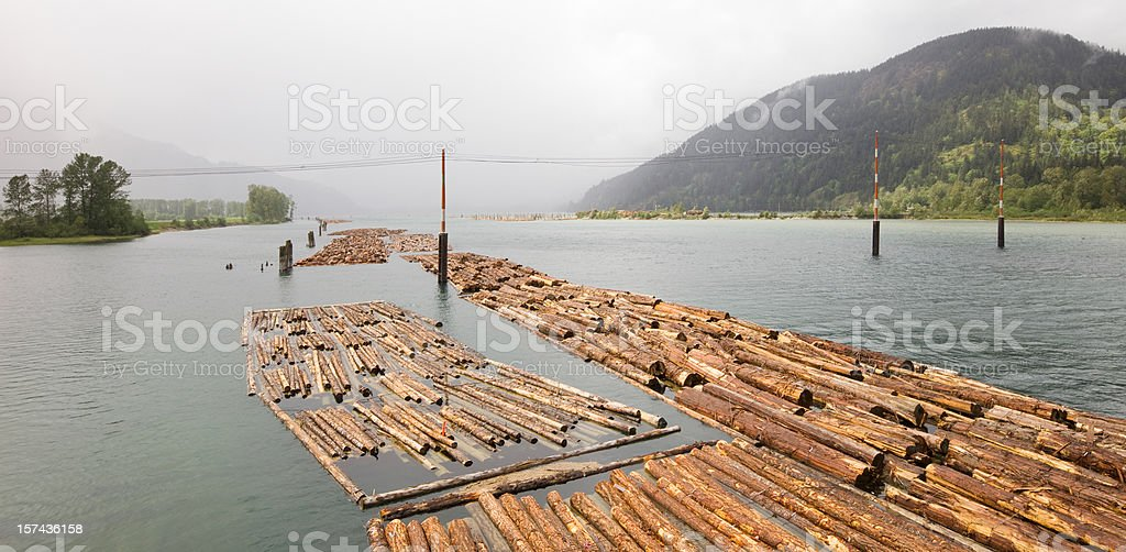 Pulpwood Log Boom in a river stock photo