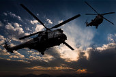 Puma Military Helicopters