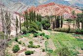 Pumamarca Landscape