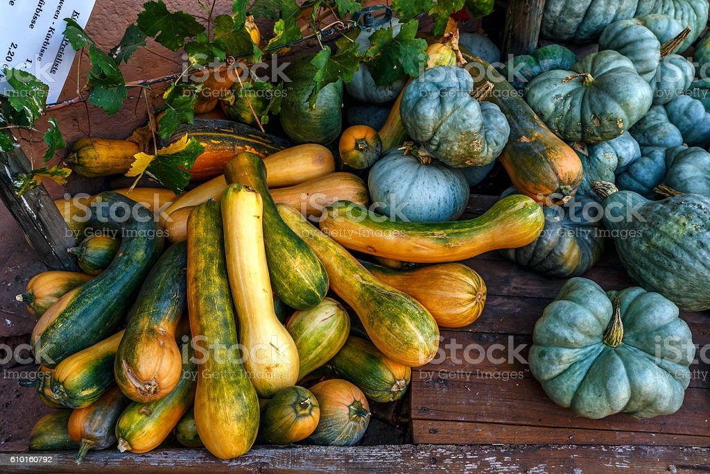 Pumkins of the season stock photo