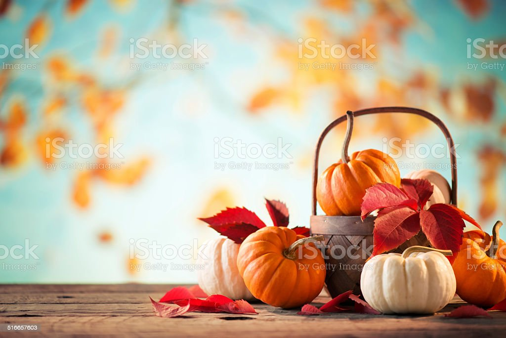 Pumkins with copy space stock photo