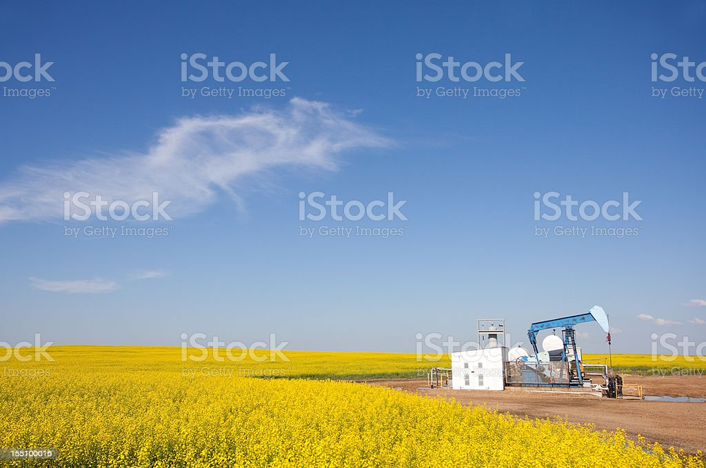 Pumpjack in Canola with Alberta Oil Industry royalty-free stock photo