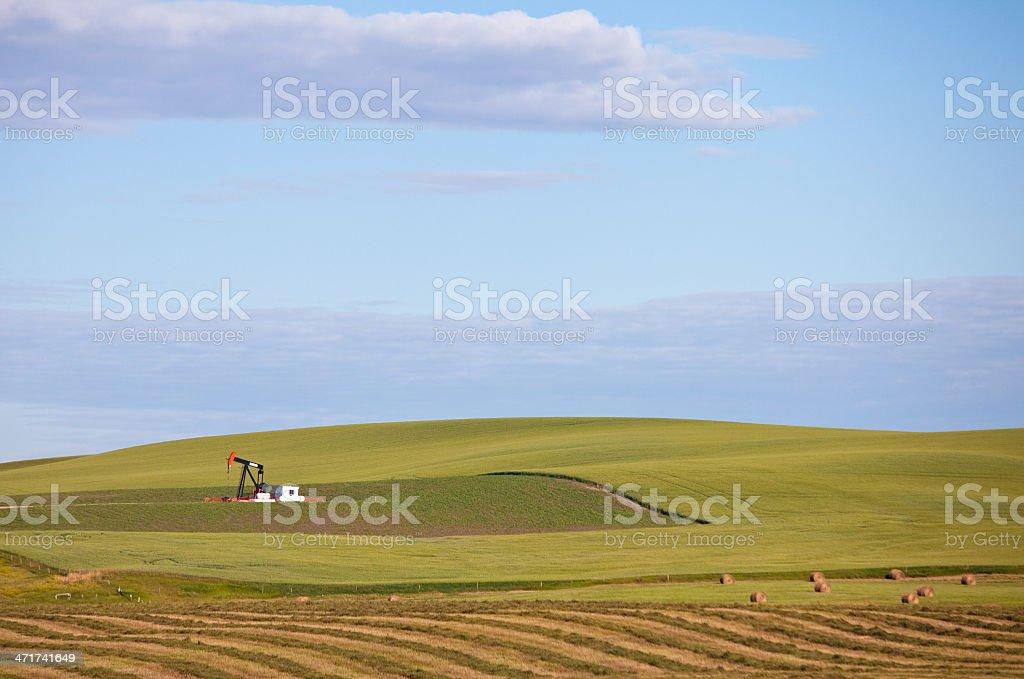 Pumpjack in Wheat Field royalty-free stock photo