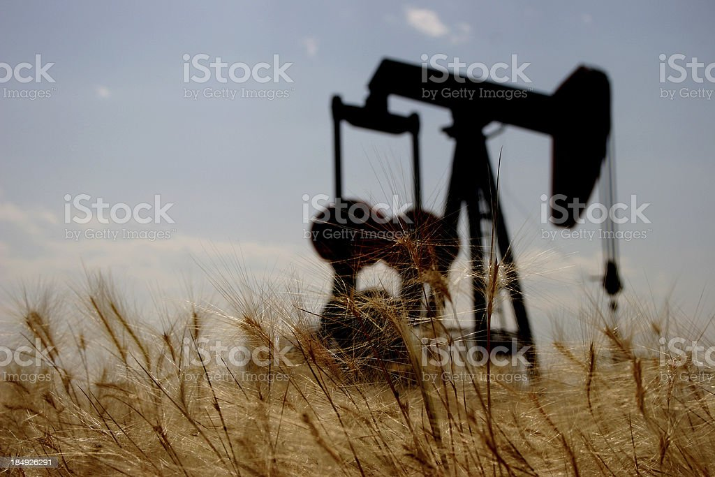 Pumpjack on the Field royalty-free stock photo