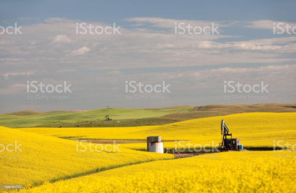 Pumpjacks on the Prairie royalty-free stock photo