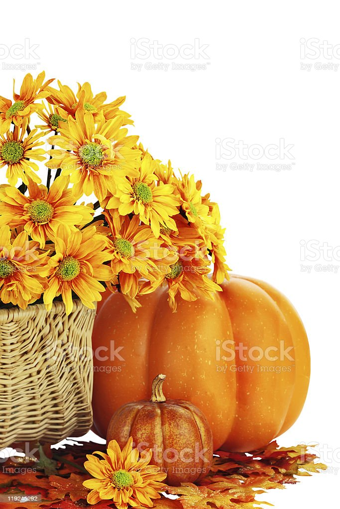 A pumpkin and a basket of flowers  stock photo