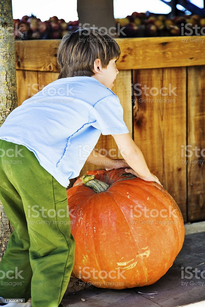 Pumpkin And Boy royalty-free stock photo