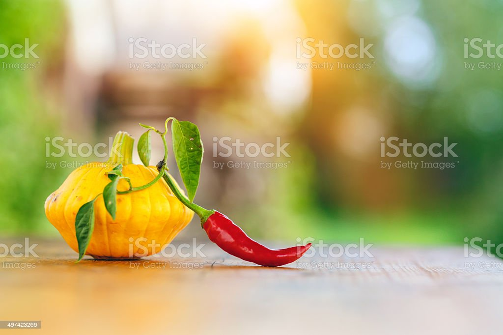 Pumpkin and Chilli Pepper stock photo