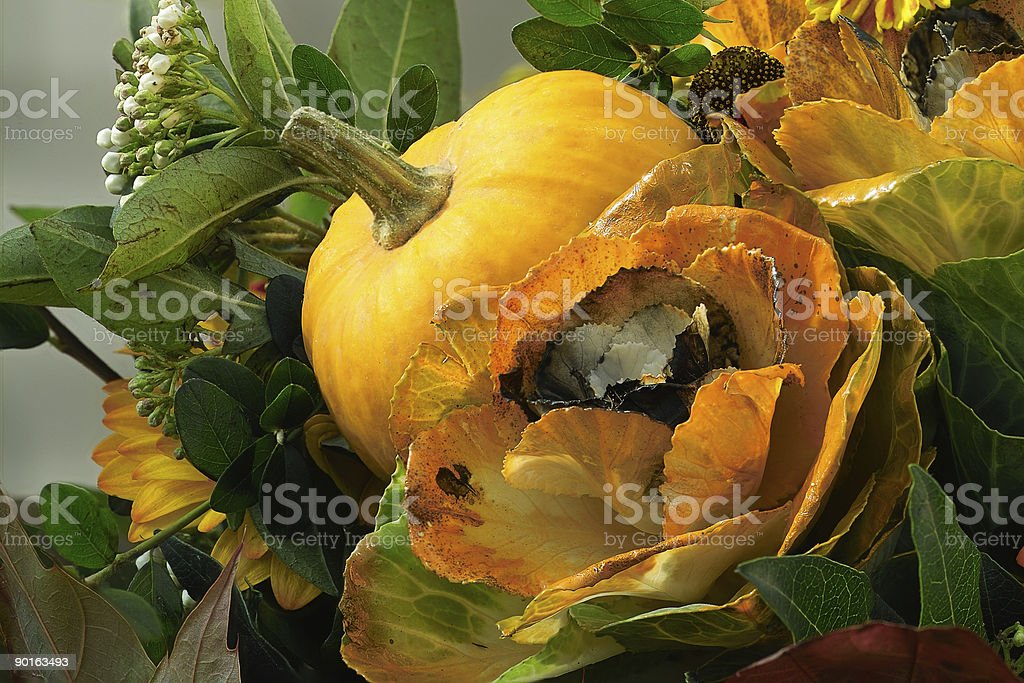Pumpkin and flowers royalty-free stock photo