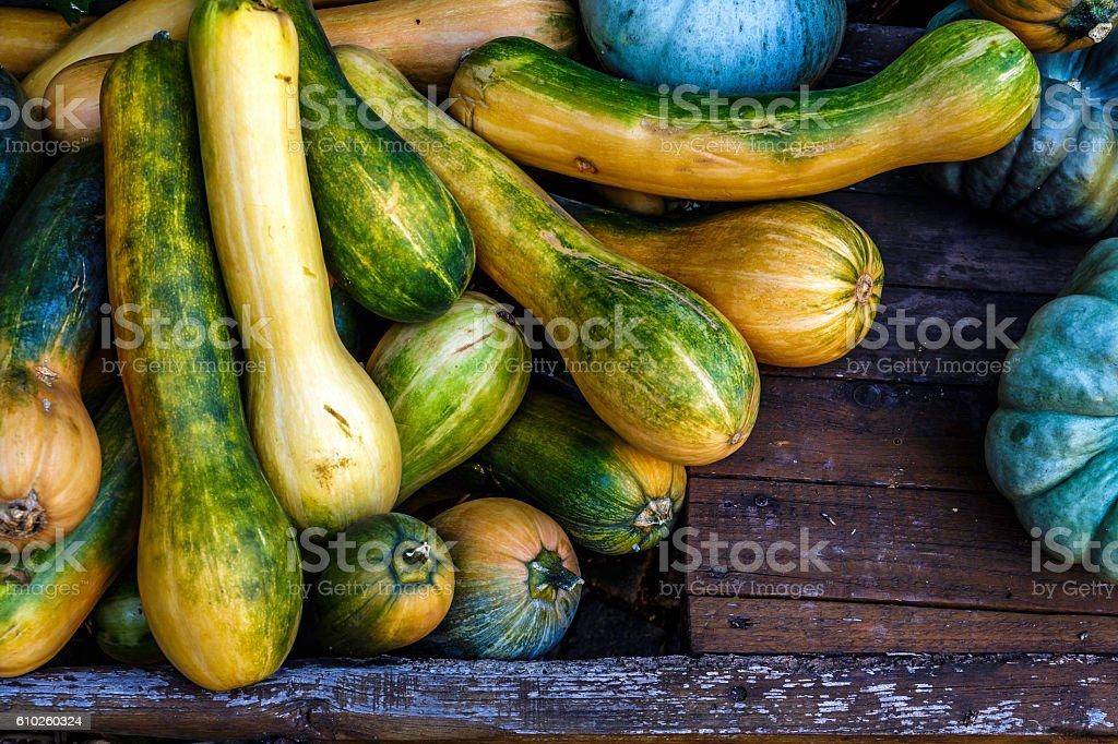 pumpkin and squash stock photo
