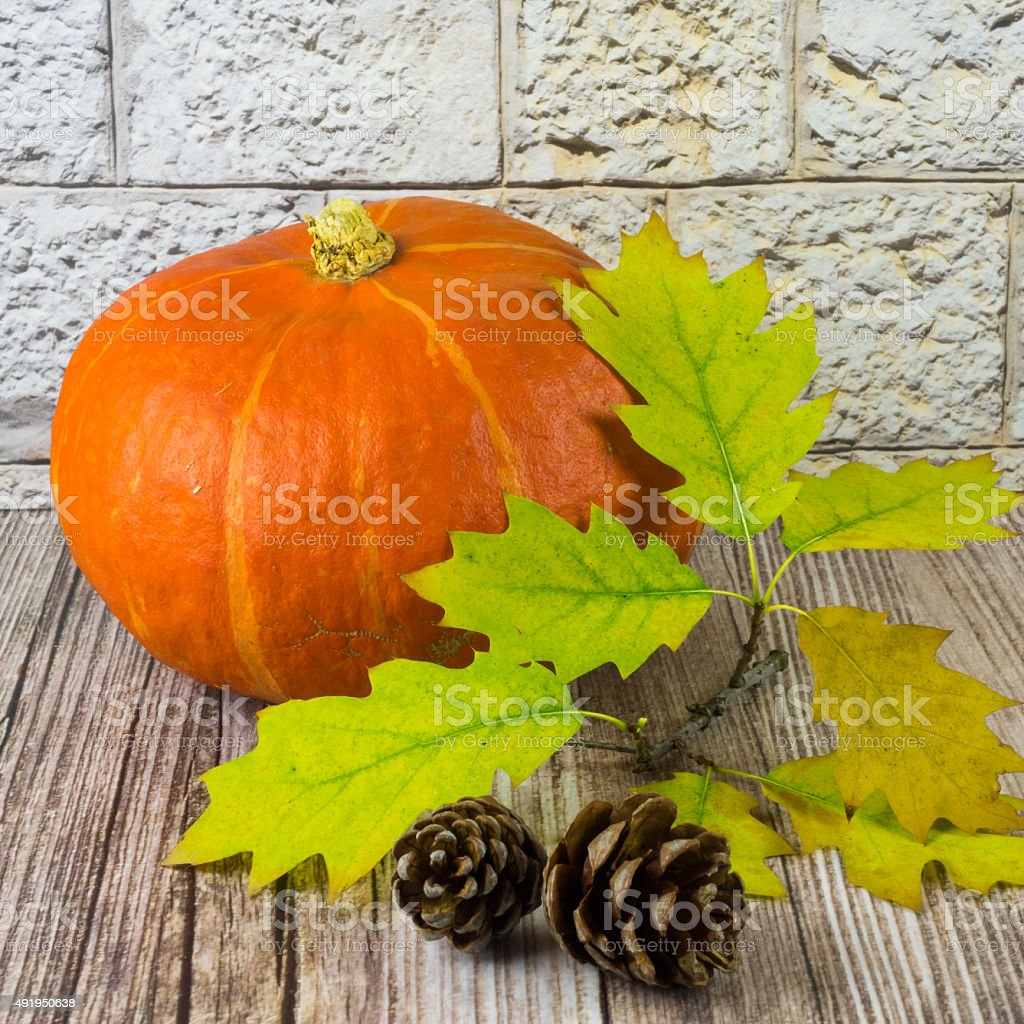 Pumpkin arranged with oak leaves and fir cones stock photo