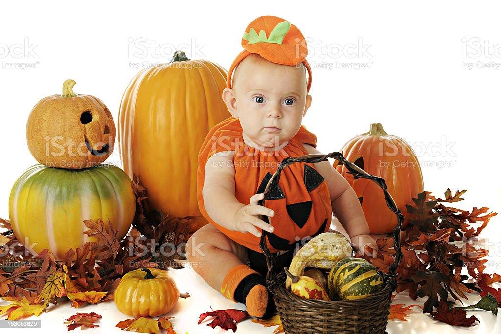 Pumpkin Baby stock photo