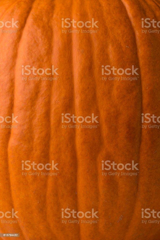 Pumpkin Background Texture Macro Skin stock photo