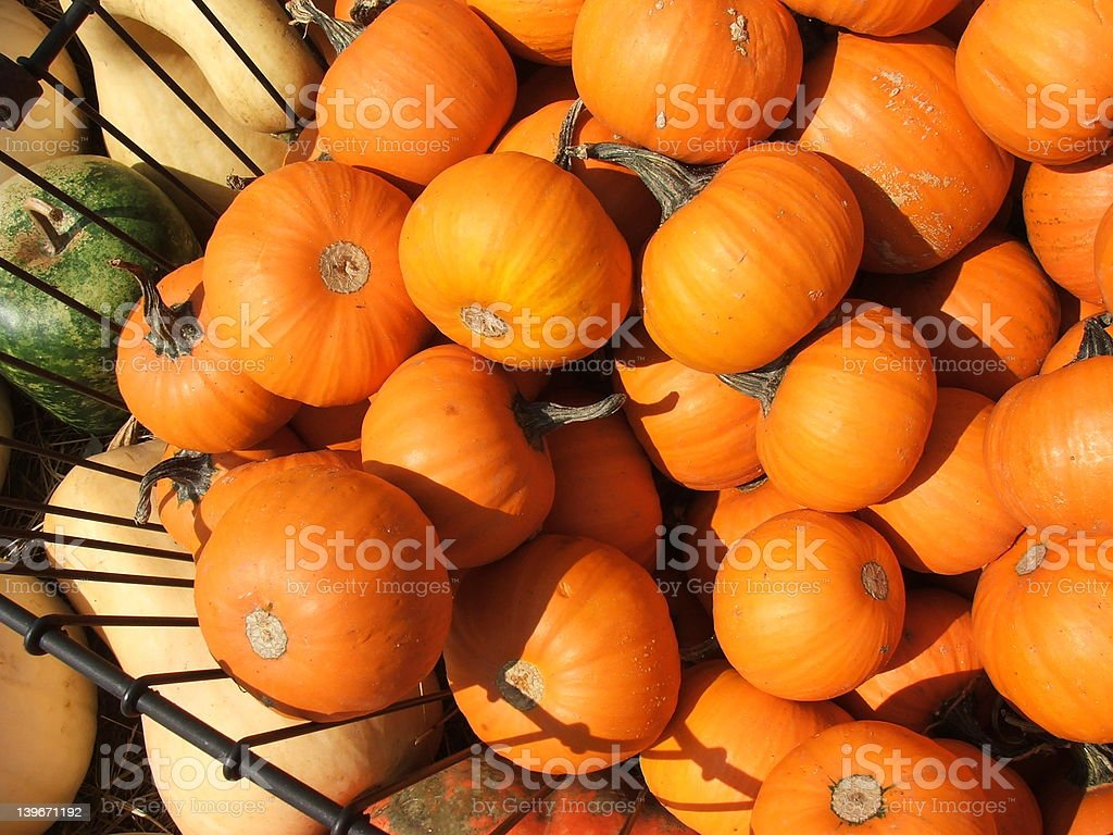 pumpkin basket stock photo