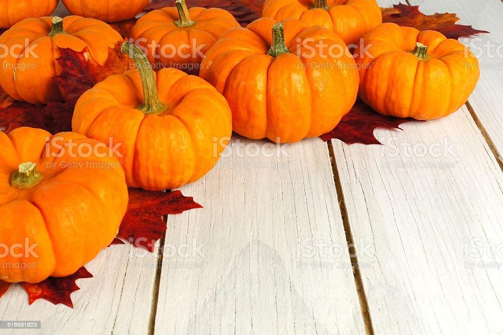 Pumpkin border on wood stock photo