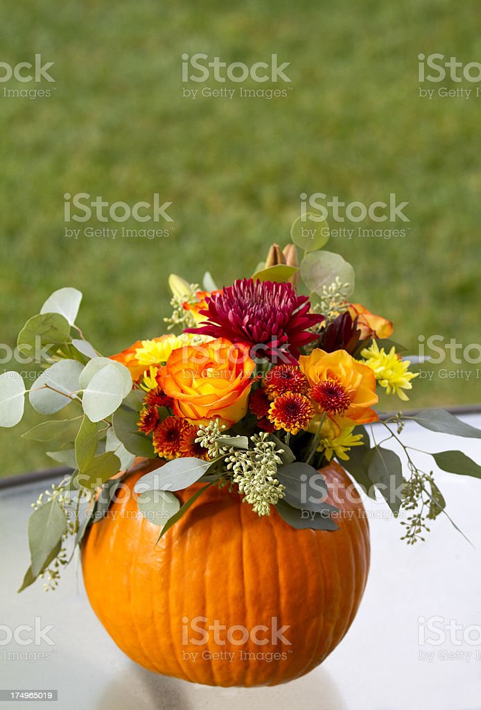 Pumpkin Bouquet stock photo