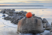 Pumpkin by sea and stones