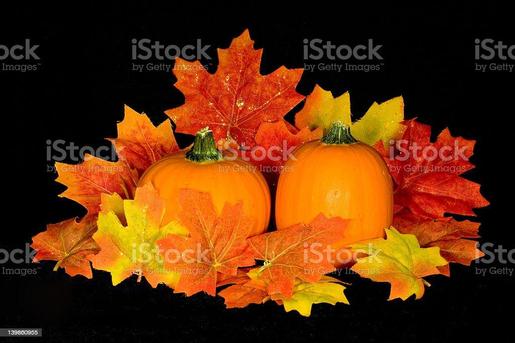 Pumpkin Centerpiece royalty-free stock photo