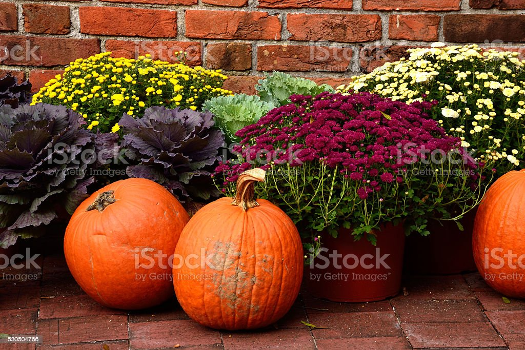 Pumpkin Fall Decorations - on the porch stock photo