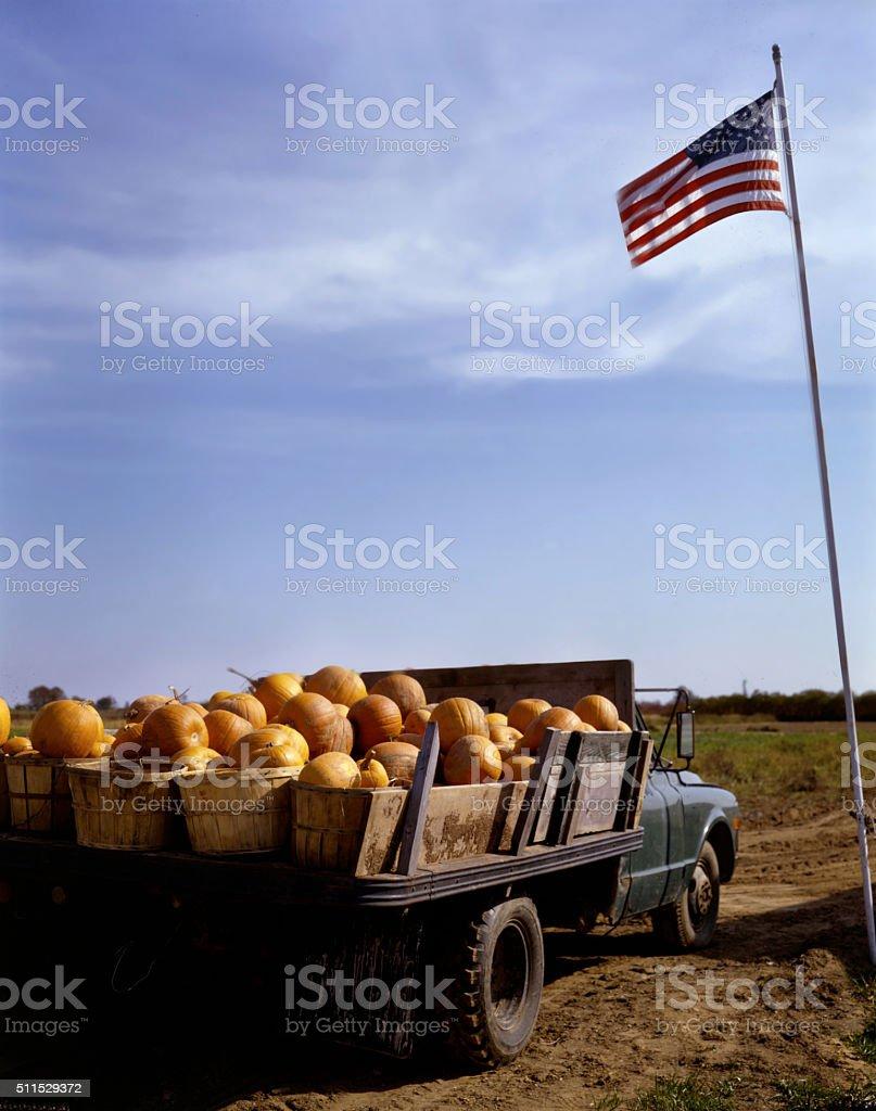pumpkin farm truck stock photo