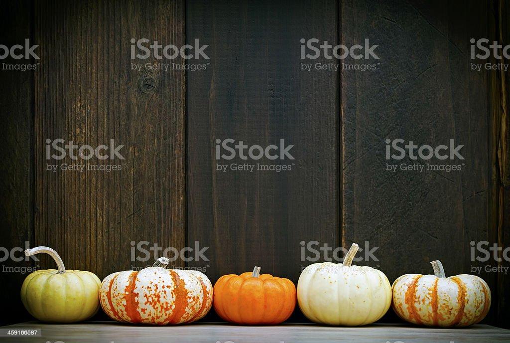 Pumpkin frame royalty-free stock photo
